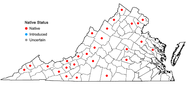 Locations ofLespedeza hirta (L.) Hornemann var. hirta in Virginia