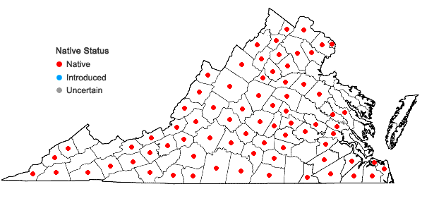 Locations ofLespedeza hirta (L.) Hornemann in Virginia