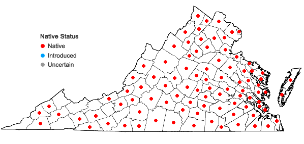 Locations ofLespedeza repens (L.) W. Bart. in Virginia