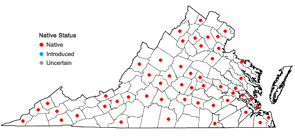 Locations ofLeucobryum glaucum (Hedw.) Ångstr in Virginia