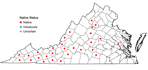 Locations ofLeucodon brachypus Bridel in Virginia