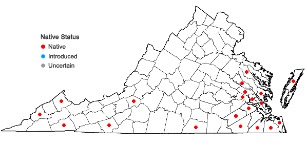 Locations ofLeucolejeunea unciloba (Lindenb.) A. Evans in Virginia