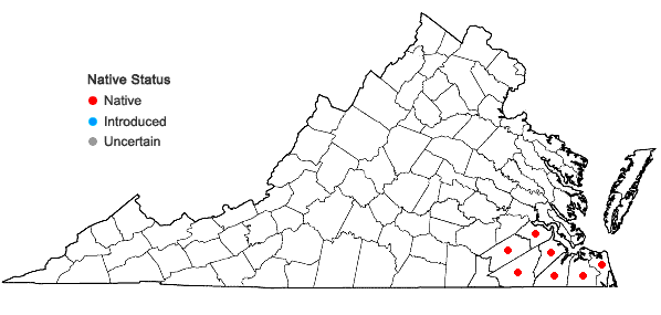 Locations ofLeucothoe axillaris (Lam.) D. Don in Virginia