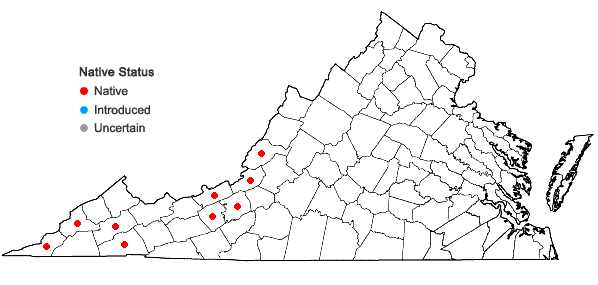 Locations ofLiatris aspera Michx. in Virginia