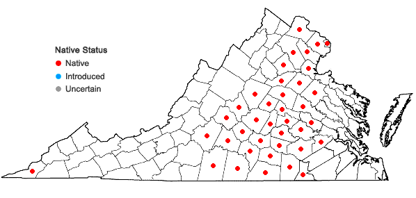 Locations ofLiatris squarrosa (L.) Michx. var. squarrosa in Virginia
