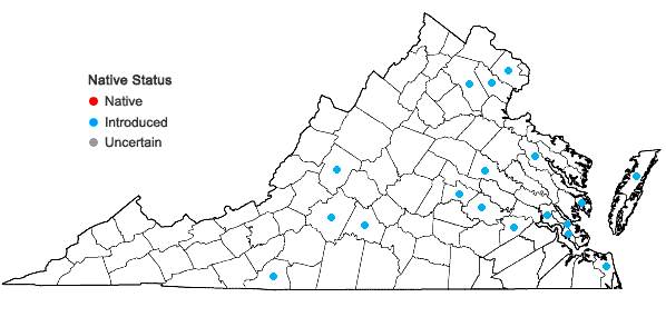 Locations ofLigustrum vulgare L. in Virginia