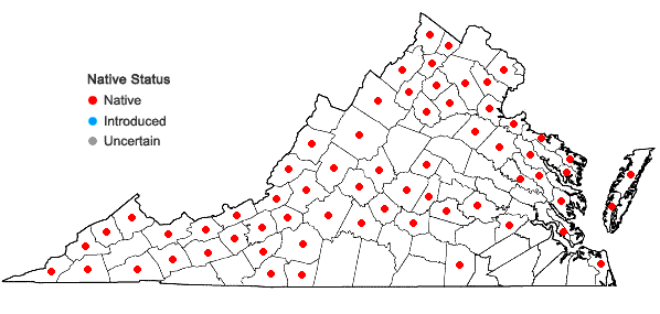 Locations ofLinum virginianum L. in Virginia