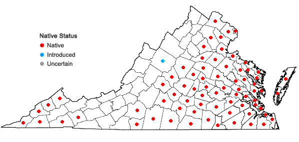 Locations ofLiquidambar styraciflua L. in Virginia