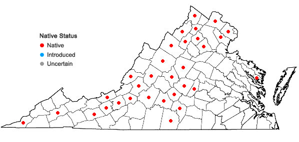 Locations ofLithospermum canescens (Michx.) Lehm. in Virginia