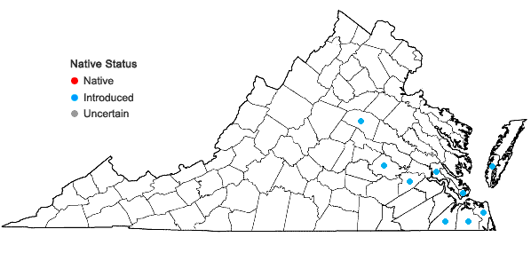 Locations ofLolium temulentum L. in Virginia