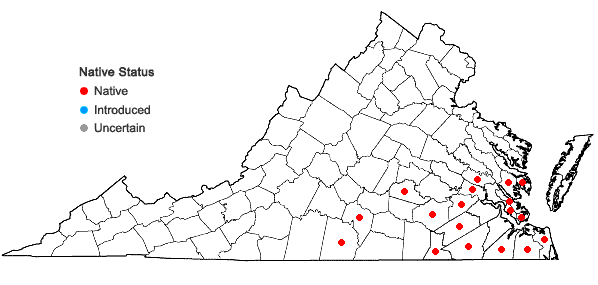 Locations ofLudwigia glandulosa Walter in Virginia