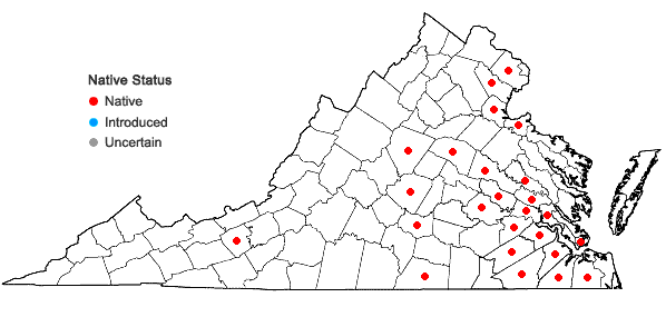 Locations ofLudwigia leptocarpa (Nuttall) Hara in Virginia
