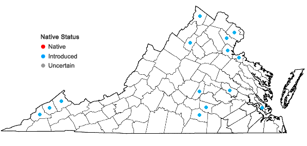 Locations ofLudwigia peploides (H.B.K.) Raven var. glabrescens (Kuntze)Shinners in Virginia