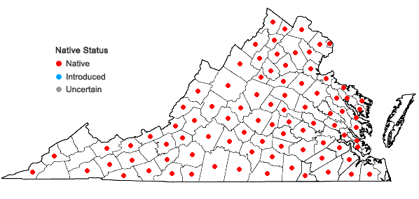 Locations ofLuzula echinata (Small) F.J. Hermann in Virginia