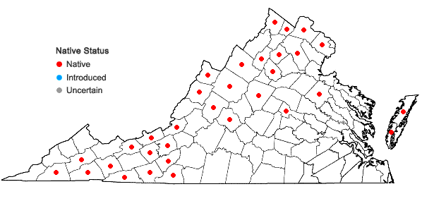Locations ofLycopus uniflorus Michx. in Virginia