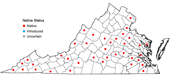 Locations ofLygodium palmatum (Bernh.) Sw. in Virginia