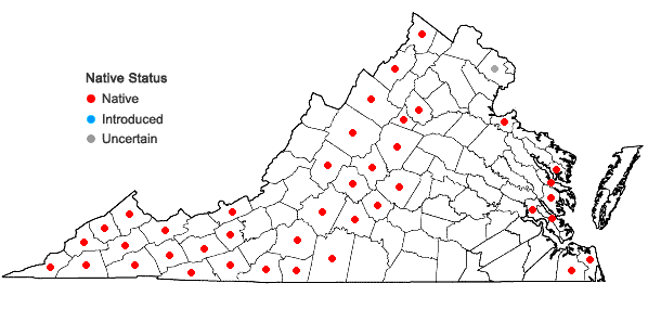 Locations ofMagnolia tripetala (L.) L. in Virginia