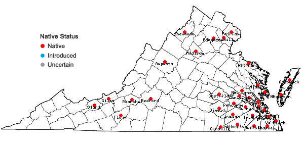 Locations ofMalus angustifolia (Aiton) Michx. in Virginia