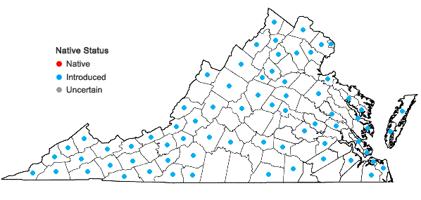 Locations ofMalus pumila P. Mill. in Virginia