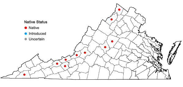Locations ofMarsupella sphacelata (Giesecke ex Lindenb.) Dumort. in Virginia