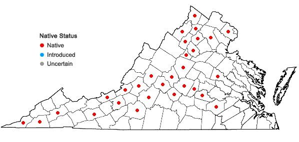 Locations ofMatelea obliqua (Jacq.) Woods. in Virginia