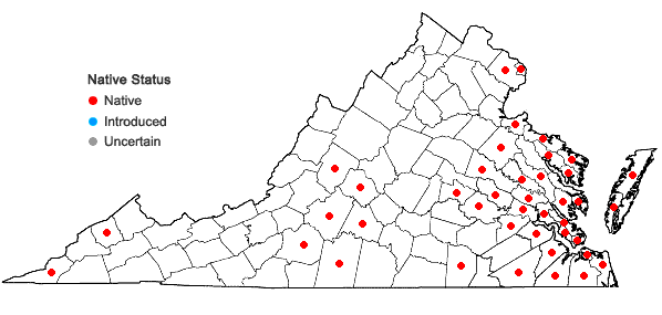 Locations ofMelothria pendula L. in Virginia