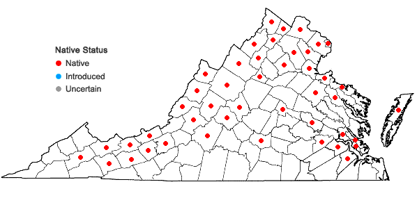 Locations ofMentha canadensis L. in Virginia