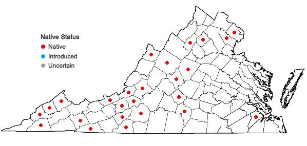 Locations ofMetzgeria conjugata Lindberg in Virginia