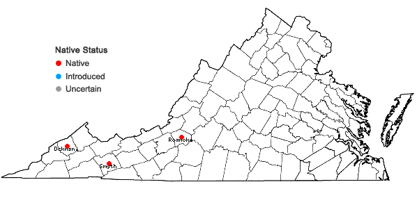 Locations ofMetzgeria leptoneura Spruce in Virginia