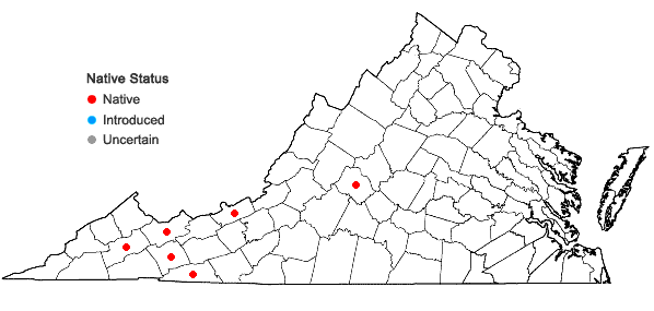 Locations ofMetzgeria temperata Kuwahara in Virginia
