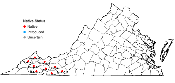 Locations ofMicranthes caroliniana (Gray) Small in Virginia