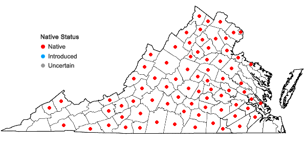 Locations ofMicranthes virginiensis (Michaux) Small in Virginia