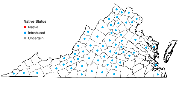 Locations ofMicrothlaspi perfoliatum(Linnaeus) F. K. Meyer in Virginia