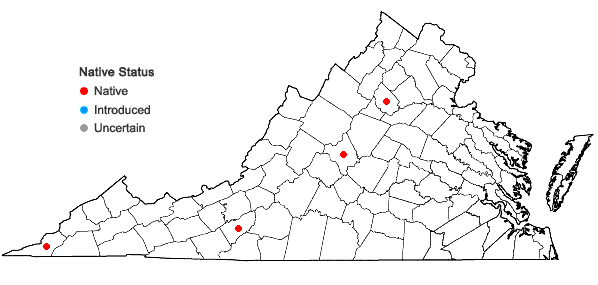 Locations ofMinuartia groenlandica (Retz.) Ostenf. in Virginia