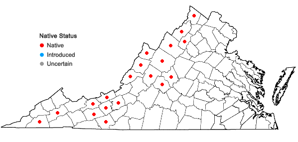 Locations ofMinuartia michauxii (Fenzl) Farwell var. michauxii in Virginia