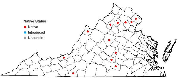 Locations ofMnium stellare Hedwig in Virginia