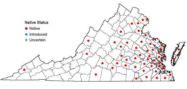 Locations ofMonarda punctata L. var. punctata in Virginia