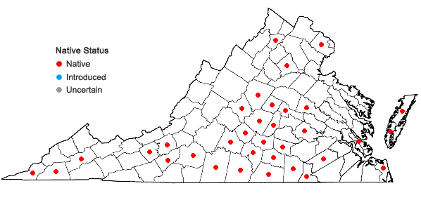 Locations ofMuhlenbergia capillaris (Lam.) Trin. in Virginia