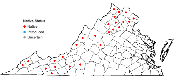 Locations ofMuhlenbergia mexicana (L.) Trin. in Virginia