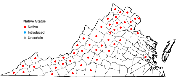 Locations ofMuhlenbergia sobolifera (Muhl. ex Willd.) Trin. in Virginia
