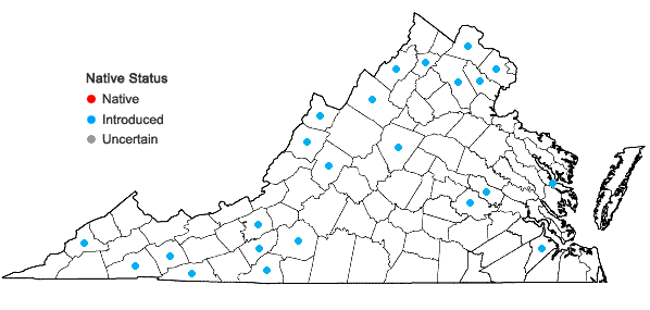 Locations ofMyosotis scorpioides L. in Virginia