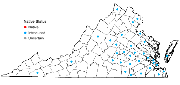 Locations ofMyriophyllum aquaticum (Vell.) Verdc. in Virginia