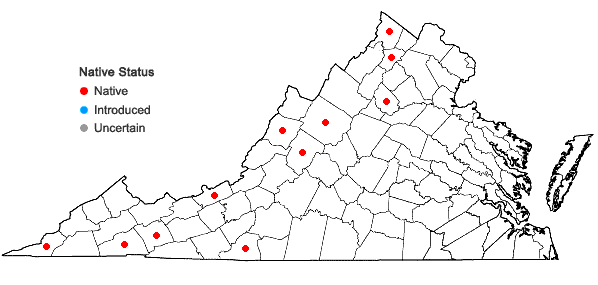 Locations ofMyurella sibirica (Müll. Hal.) Reimers in Virginia