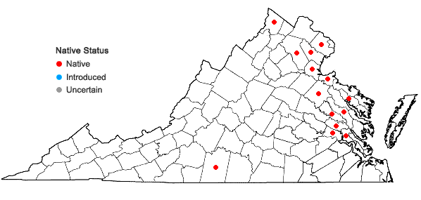 Locations ofNajas gracillima (A. Braun ex Engelm.) Magnus in Virginia