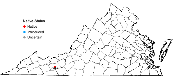 Locations ofNapaea dioica L. in Virginia