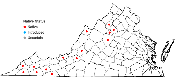 Locations ofNeckera pennata Hedwig in Virginia