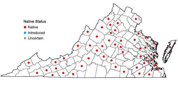 Locations ofNowellia curvifolia (Dicks.) Mitt. in Virginia