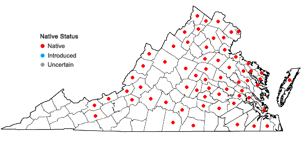 Locations ofNuphar advena (Ait.) Ait.f. in Virginia