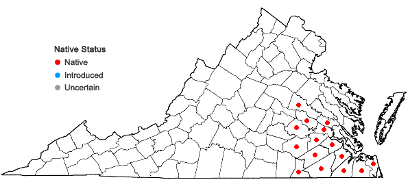 Locations ofNyssa aquatica L. in Virginia