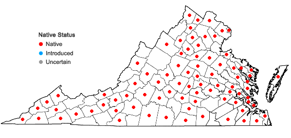 Locations ofObolaria virginica L. in Virginia